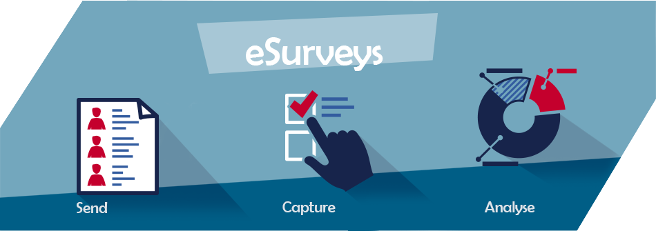 eSurveys, Online Surveys, Survey Statistics